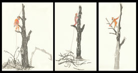 image of storyboard  - A hand drawn storyboard  - JPG
