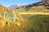 The picturesque landscape of Patagonia. Charming green valley in the National Park Perritaz Moreno i