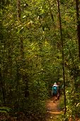 Trekker Walks In Jungles In Sri Lanka