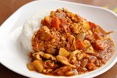 image of chinese parsley  - spicy chicken curry and rice on dish - JPG