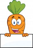 Carrot Cartoon Character Over Blank Sign