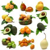 Fruit Sampler