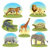 African animals with graphic backgrounds. Vector illustration, isolated objects.