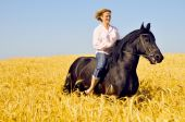 Beautiful Smiling Woman Rides A Pretty Horse In Field