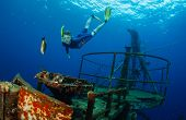 image of bottomless  - Free diver gliding in the depth near ship wreck - JPG