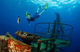 pic of bottomless  - Free diver gliding in the depth near ship wreck - JPG