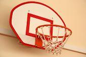 The basketball shield
