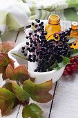 stock photo of elderberry  - Fresh elderberry in mortar on wooden background - JPG
