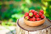 pic of birching  - Strawberries. Organic Berries Closeup. Ripe Strawberry In The Fruit Garden Old Wooden Bowl Filled With Succulent Juicy Fresh Ripe Red Strawberries On An Old Birch Stump. Toned Image