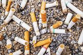 picture of discard  - Cigarette butts discarded in ashtray of sand background