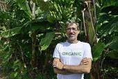 Agriculture: Organic farmer in front of banana plantation