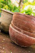Huge Plant Pots