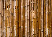 Decorative Old Bamboo Wood  Background