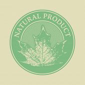 Label with the words Natural Product and leaf. Hand drawn vector. Eps8