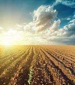 sunset in clouds and plowed field