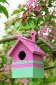 Birdhouse in garden outdoors