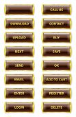 Brown And Golden Rectangle Glossy Internet Buttons