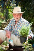 Portrait of a smiling mature man engaged in gardening