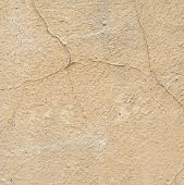 Cracked painted wall fragment