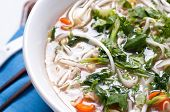 pic of cilantro  - chicken pho soup with noodles bean sprouts and cilantro and vegetables - JPG