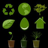 Icons For The Environment