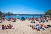 SYDNEY, AUSTRALIA-DEC 21, 2014 :People relaxing on sandy Shelly beach at Manly in Sydney, Australia on Dec 21. 2014.Manly beach is one of a famous beach in the world.