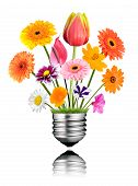 Various Colorful Flowers Growing Out Of Light Bulb Screw