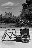 stock photo of rickshaw  - Central Park Manhattan The Lake rickshaw bike New York US - JPG