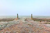 Grassland Entrance On A Cold Winter Day Misty Morning