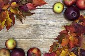 Beautiful closeup background with colorful leaves and red-ripe apples on old wooden board.