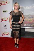LOS ANGELES - JAN 29:  Rhea Seehorn at the