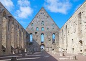 Tallinn. Estonia. Ruins of St. Brigitta convent in Pirita region