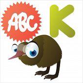 animal abc: K is for cute little comic cartoon illustration of Kiwi