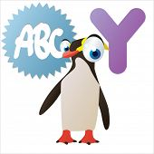 animal abc: Y is for cute little comic cartoon illustration of Yellow eyed Penguin