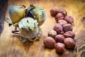foto of filbert  - Healthy food full of fatty acids organic nutrition. Hazelnuts kernel and cluster filbert nuts in hard shell on rustic old wooden table.