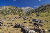 stock photo of shan  - Scenic landscape in mountain range Tien - JPG