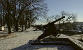 Several Old Cannons On Pedestals In Chernigov