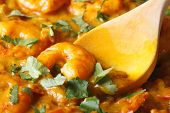 Shrimps In Curry Sauce With Cilantro Macro. Horizontal