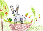 rabbit on meadow. child drawing.