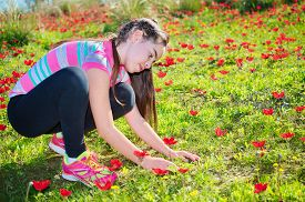 picture of windflowers  - Teenage girl with braces on her teeth in a field of wild red anemone coronaria (windflower) flowers blooming in the Galilee Israel after the winter rains ** Note: Soft Focus at 100%, best at smaller sizes - JPG