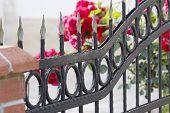 stock photo of wrought iron  - Iron Fence - JPG