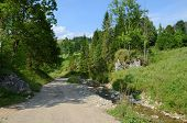 image of pieniny  - Road in the mountains  - JPG