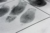 picture of fingerprint  - Fingerprint on police fingerprint card and black background - JPG