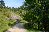 pic of pieniny  - Road in the mountains  - JPG