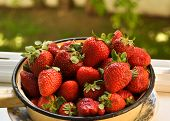 pic of strawberry  - A bowl of strawberries - JPG