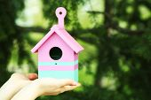 stock photo of nesting box  - Decorative nesting box in female hands on bright background - JPG