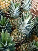 Pineapples Close Up in Basket