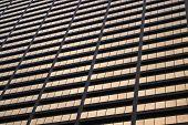 Skyscraper Facade, Chicago