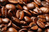 granos de café macro close up