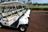 Tropical Golf Carts 2